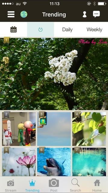 S__17809411.jpg